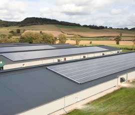 farmer Chicken Farmer Installs a £1.2 Million Pound Solar Panel System